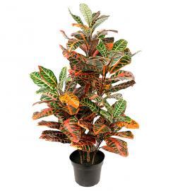 Konstgjord Croton 100 cm , hemmetshjarta.se