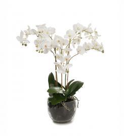 Konstgjord Phalaenopsis 70 cm , hemmetshjarta.se