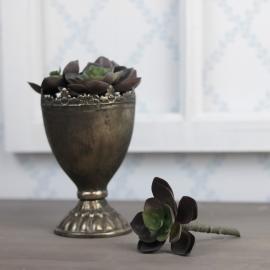 Konstgjord Succulent 12 cm * , hemmetshjarta.se