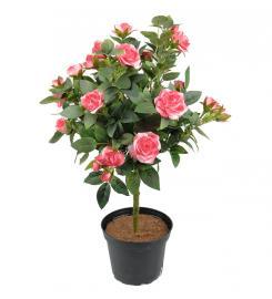 Konstgjord Stamros 45 cm Rosa , hemmetshjarta.se